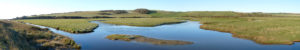 lower-cuckmere-2-1200x200